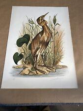 Vintage Audubon Lithograph JEROME TROLLIET 1973 Hand Signed LE Art Print Bird
