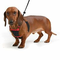 RED Yuppie Puppy Mesh Dog Anti-Pull Harness-Stops Pulling Instantly L/XL,M,S,Toy