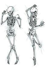 """59"""" Otaku The Skeleton Anime Dakimakura Hug Body Pillow Cover Pillow Case NEW"""