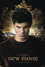 TWILIGHT NEW MOON Poster Jacob in Trees New 24x36