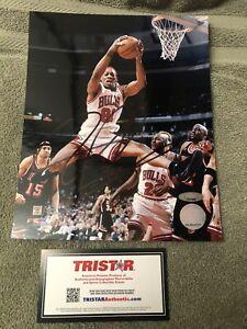 "Dennis Rodman Signed/Autographed 8""x10"" Photo! TRISTAR Certified PSA/JSA Pass"