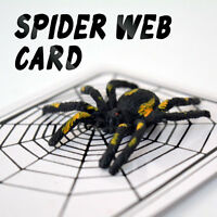 The Spider Web Card Gimmick Magician's Scariest Undetectable Spider Magic Trick