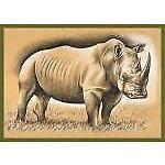 rhinocards