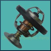 Land Rover Discovery 300 TDi Thermostat
