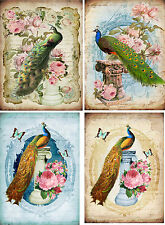 Vintage inspired peacock on pillars cards tags set of 8 with envelopes