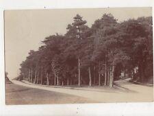 Hothfield Kent 1908 RP Postcard 555b