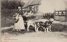 CPA - BELGIQUE - Attelage de chiens - En Flandre - Laitière.