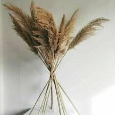 15x Artificial Pampas Grass Natural Dried Flower Wedding Decor Home Decoration