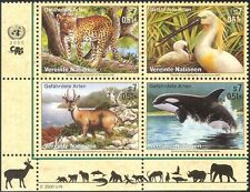 Nations Unies (V) 2000/Léopard Whale/Oiseaux/Animaux/Nature/faune/conservation BLK (b1805)