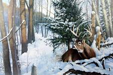 """Bruce Miller /"""" Backwoods Runner/"""" Deer Buck Art Print  22/"""" x 16.5/"""""""