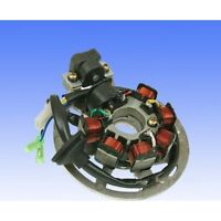 Generator Lichtmaschine Stator Ankerplatte alternator China Motor SFM 1PE40QMB 1