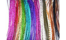"8""-12"" Multi Color W/natural Colors Feathers Hair Extension -7 Feathers"
