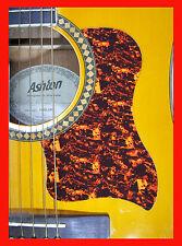Guitarra Acústica Pickguard/Scratchplate Concha Grande Rasguño Placa