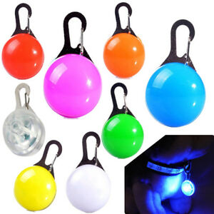 LED Dog Tag Collar Light Up Pet Puppy Flashing See Dark Disc Night Pendant Charm