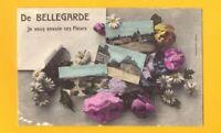 BELLEGARDE (45) UNE PENSEE de ... BELLEGARDE / VILLAS , EGLISE & MONUMENTS 1910