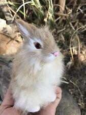 Bunny Rabbit mini Magic Prop or Gift Idea *Spring or Easter Basket or Decor