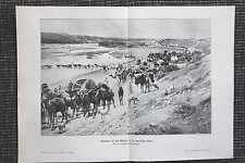 Karawane auf dem Marsch algerische Sahara DRUCK von 1906 Kamele Algerien Wüste