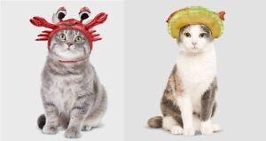 2 Cat Headpiece Halloween Costumes - Fish Taco & Crab #6766