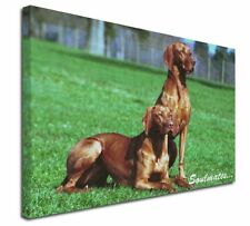 More details for hungarian visla dogs 'soulmates' x-large 30