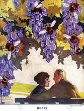 RIVISTA pagina RULLO usa le API uve COPPIA Romance miele art print poster bb8094