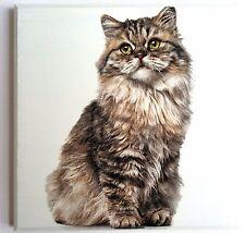 Wall Picture Plaque Vintage Retro Style Handmade , Decoupage, Kitten , Cat