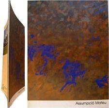 Assumpció Mateu peintures 1985-1988 catalogue Fondation Vasarely Aix-en-Provence
