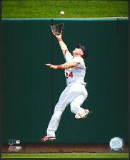 Rick Ankiel Fielding St. Louis Cardinals 8x10 Photo With Toploader