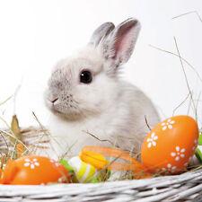 """ambiente Servilletas """"Blanco Conejo"""" 20 piezas,conejo blanco,3 Pliegues,33 X 33"""