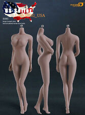 Phicen 1/6 Female Seamless Figure Body L Bust SUNTAN Steel Skeleton S09C ❶USA❶