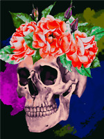 DIY Digital Skull Oil Painting Canvas Kit Paint by Numbers Kids Gifts Home Decor