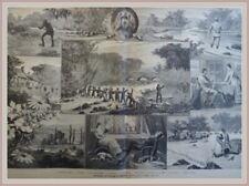 """""""Forellenfang+Otterjagd in Schottland""""Blatt m. 9 Abb. Original Holzstich v. 1884"""