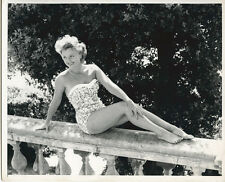 Avril Angers British 1950's star sitting on wall in swimsuit original 8x10 photo