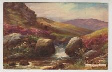Hand Coloured/Painted Unposted Collectable Devon Postcards