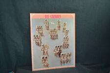 Vintage Ice Capades 1971 Brochure