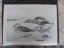 Original   Rex Brasher#141  Hand Painted Bird Print  Cinnamon Teal  #141REX2 DSS