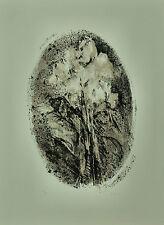 GIUSEPPE AJMONE litografia FIORI 1970 70x50 firmata numerata  rif 026 Pubblicata