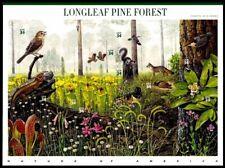 US NATURE WILDLIFE 2002 SCOTT #3611 LONGLEAF PINE FOREST 10 MVF 34c STAMP SHEET