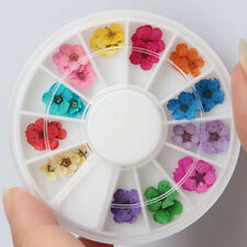 3D Decor Real Dry Dried Flower for UV Gel Acrylic Nail Art Tool Tips 12 Color US