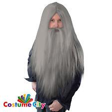 Bristol Novelty Bw909 Wizard Wig and Long Beard Grey One Size