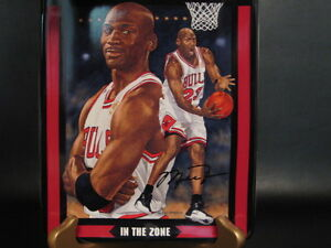 Michael Jordan Collector's Plate In The Zone