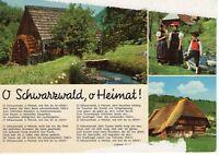 AK Ansichtskarte Schwarzwald / Liedertext 1977