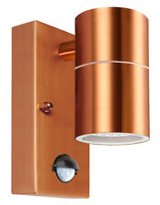 PIR Stainless Steel Single Outdoor Copper Wall Light with Movement Sensor ZLC096