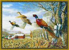 "Pheasants Area Rug 37"" x 52"" WIlderness Wildlife Barn Farm Carpet Flooring Decor"