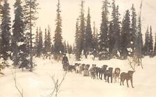 RPPC DOG SLED TEAM ON THE TRAIL ALASKA LOMEN BROS REAL PHOTO POSTCARD (c. 1910)