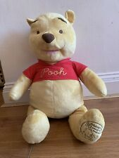 Large Winnie The Pooh Soft Toy