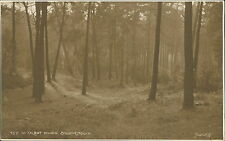 Bournemouth. Talbot Woods  Vintage  QS.212