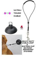 "PRO BATHTUB SUCTION CUP & 19"" Cable Loop Noose RESTRAINT Pet Dog Cat Grooming"