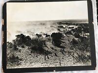 1940's Erwin Smith Silver Gelatin / Photograph - Longhorn Roundup Matador Ranch
