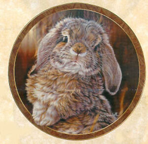 Bunny Tales Collection, by Vivi Crandall, Bradford Exchange Plate, I'm All Ears