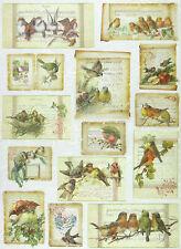 Papier de riz pour decoupage scrapbooking feuille cartes de Noël avec oiseaux